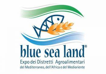 (Italiano) L'Istituto Nazionale di Geofisica e Vulcanologia al Blue Sea Land 2019